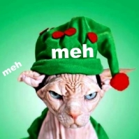 Rating icon. A hairless cat is wearing a santa hat and a sour expression. On the hat reads: meh.